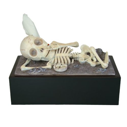 Rotary Hero Skeleton Tissue Box Cover