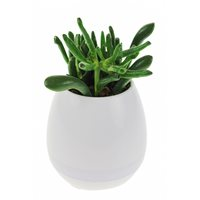 United Entertainment Rechargeable LED Flower Pot with Bluetooth Speaker - White