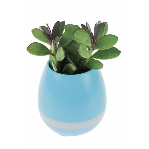 United Entertainment Rechargeable LED Flower Pot with Bluetooth Speaker - Blue