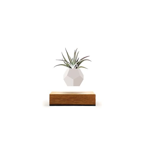 LYFE Planter 1.1 Floating Flowerpot - Oak / White