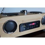 United Entertainment 3G Portable Stereo Speaker - FM Radio AUX/USB/SD - Bamboo