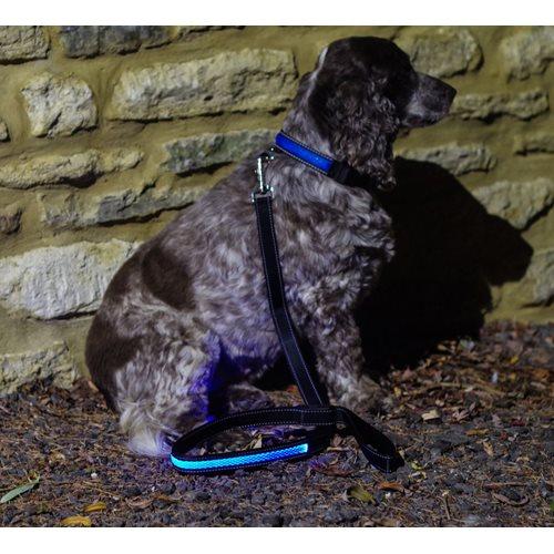 IA LED Light Up Pet Leads - Dog Leash - Blue