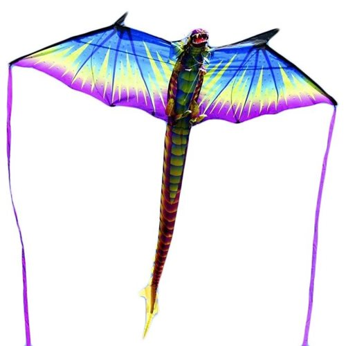 XKites 3D Dragon - Single Line Kite - Kids