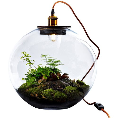 Growing Concepts DIY Sustainable Ecosystem Bolder Demeter Giant with Lamp - Botanical Mix - H42xØ40cm