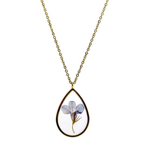 Growing Concepts Goud vergulde Halsketting met echte bloem – Lobelia – 45-50 cm