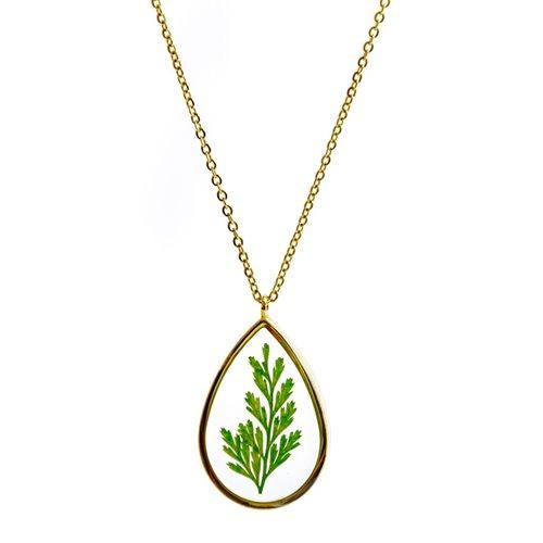 Growing Concepts Vergoldete Halskette mit echter Blume - Farn - 45-50 cm