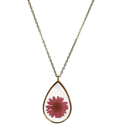 Growing Concepts Gold plated Necklace with real flower - Daisy - 45-50 cm