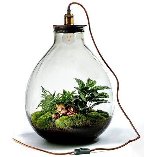 Growing Concepts DIY Duurzaam Ecosysteem Giants Ecolight XXXL - 34 Liter - Botanische Mix - H52xØ48cm