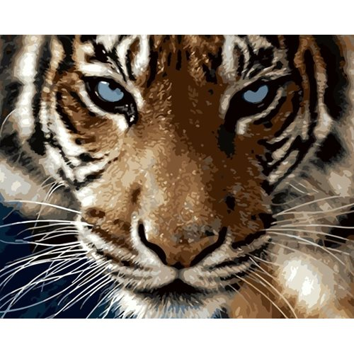Best Pause Year Of The Tiger - Paint by number - 40x50 cm - DIY Hobby Kit