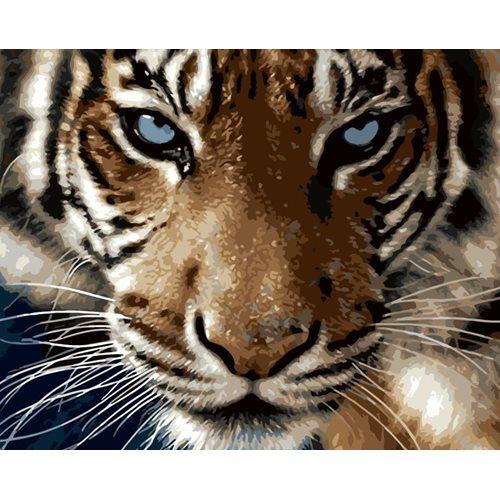 Best Pause Tiger - Malen nach Zahlen - 40x50 cm - DIY Kit