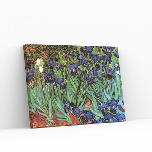 Best Pause Irises by Vincent van Gogh - Paint by number - 40x50 cm - DIY Hobby Kit