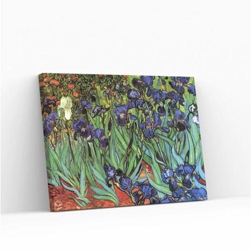 Best Pause Irises von Vincent van Gogh - Malen nach Zahlen - 40x50 cm - DIY Kit