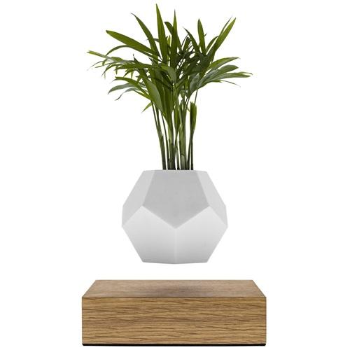LYFE Planter 1.1 Floating Flowerpot - Oak / White