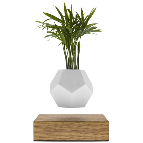 FLYTE Planter 1.1 Floating Flowerpot - Oak Base