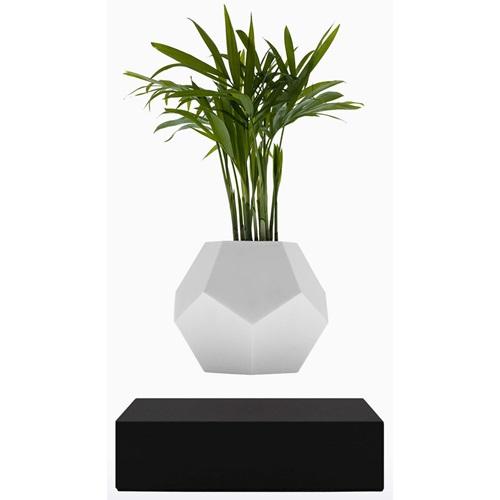 FLYTE Planter Floating Flowerpot - Black Base