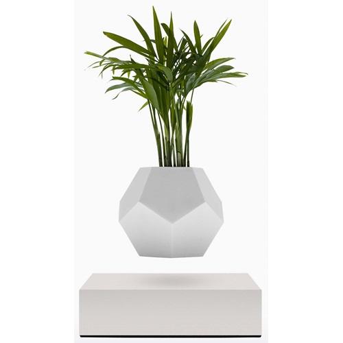 FLYTE Planter Floating Flowerpot - White Base
